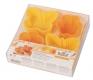 Backform Silikonbackform Schmetterling Blume 6,5 - 9 cm
