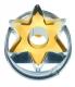 Stern mit Innenloch 5 cm 10x Ausstechform Ausstecher